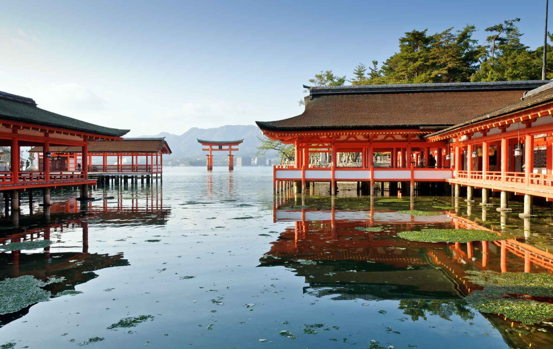 Shinto: How Japan's Religious Soul Is Surviving An Age Of Change
