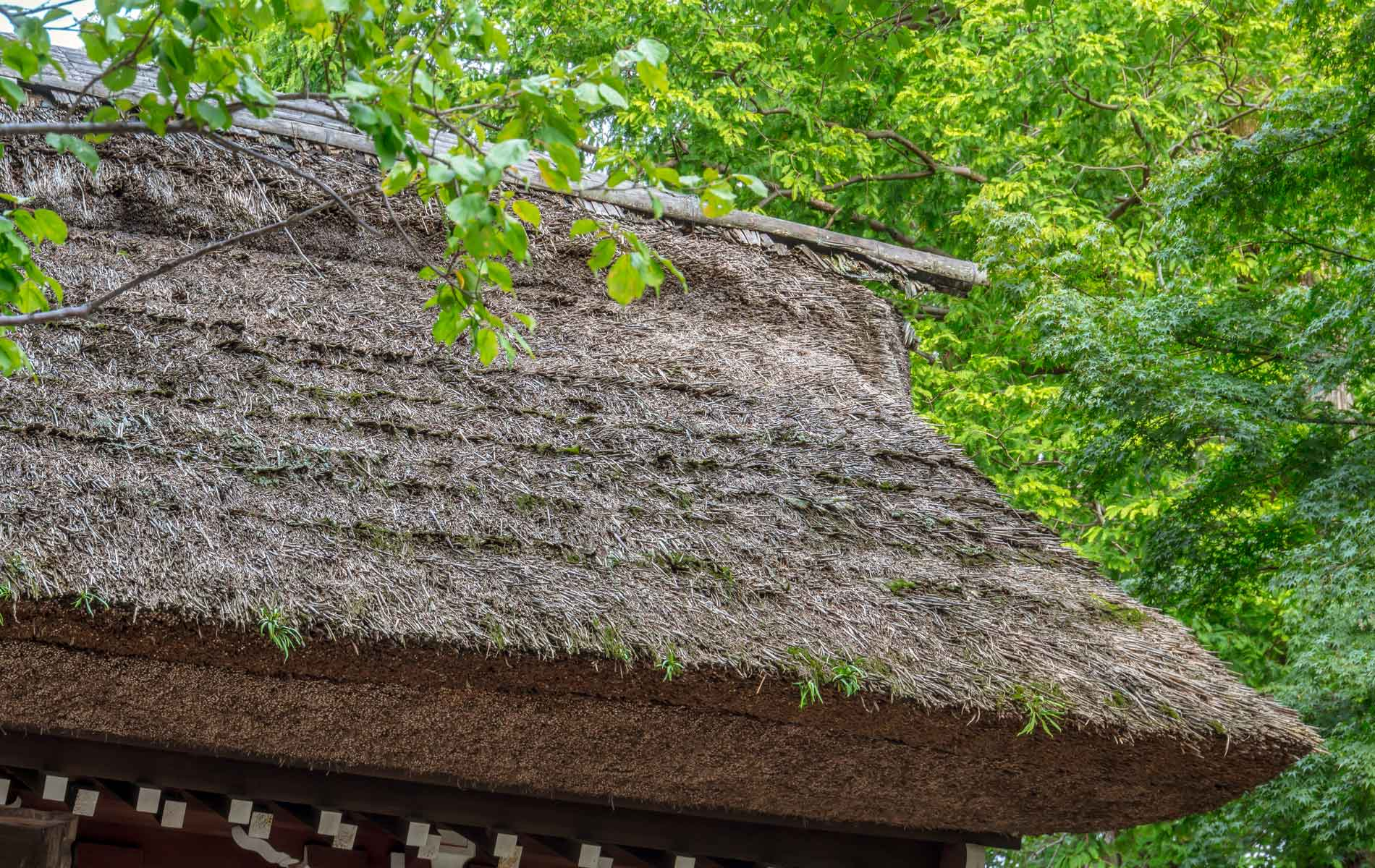 A thatched roof in one of Japan's folk villages