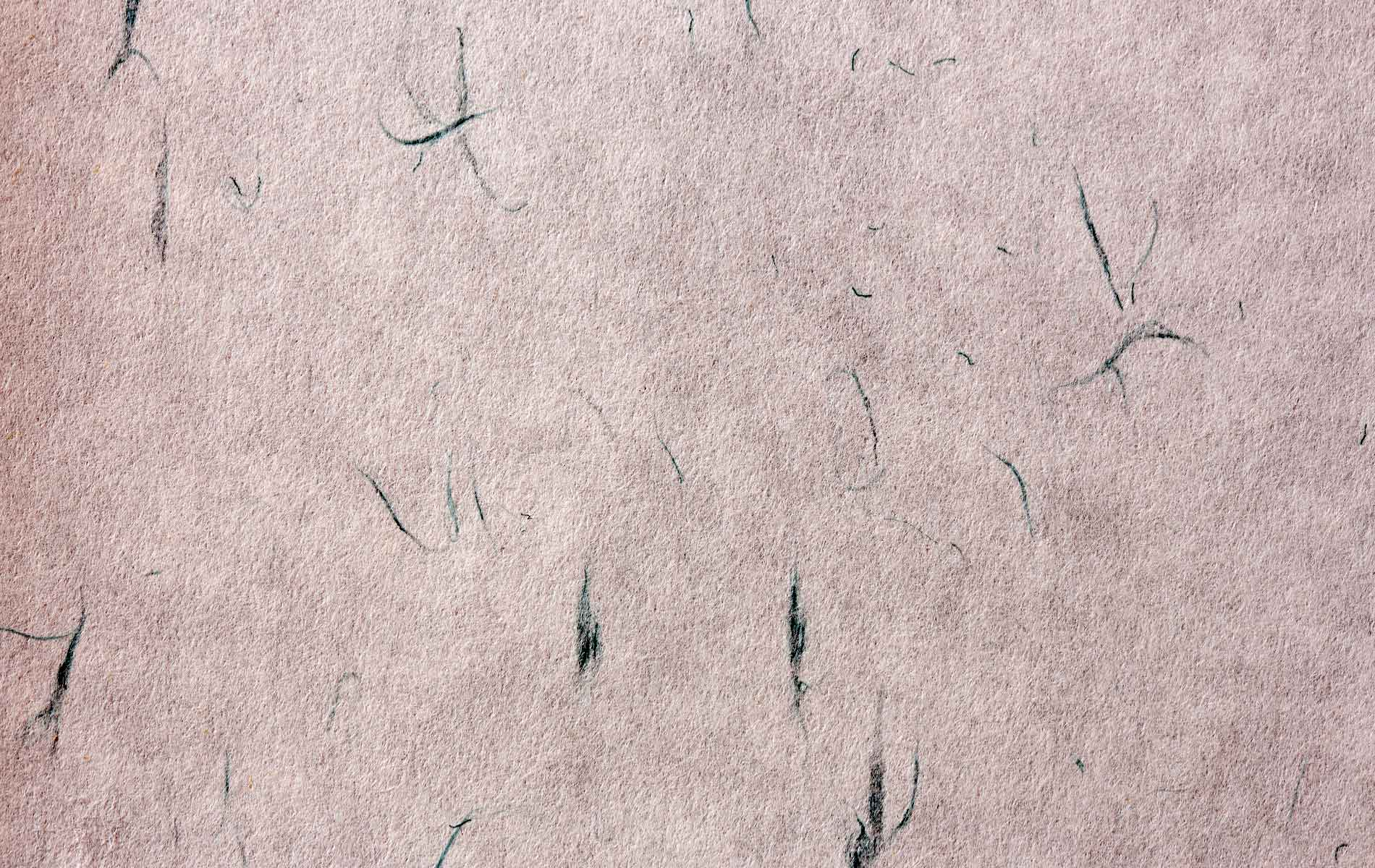 A close up of Japanese paper known as washi