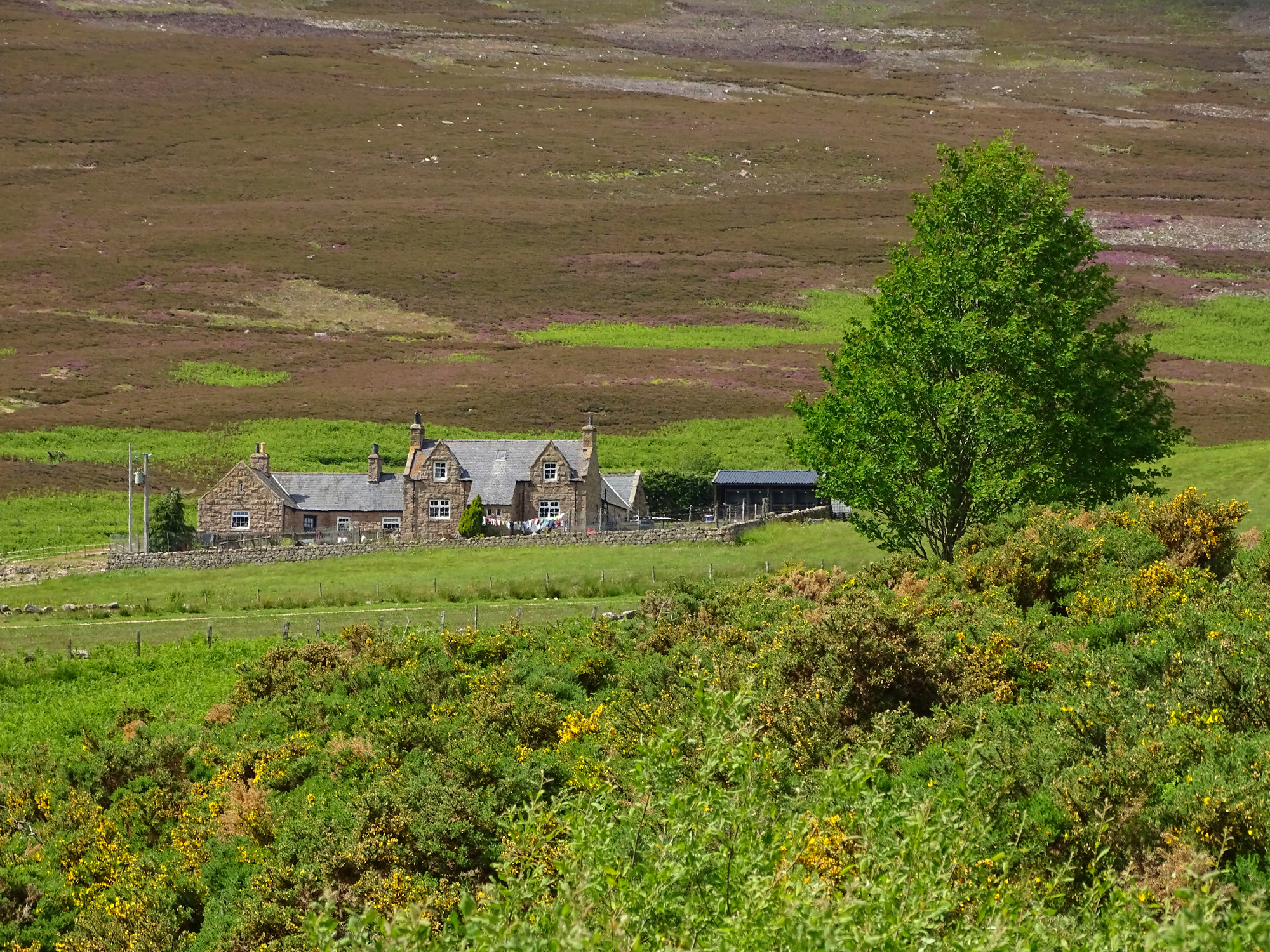 Why Scotland should be your first choice for your Whisky Trail adventure