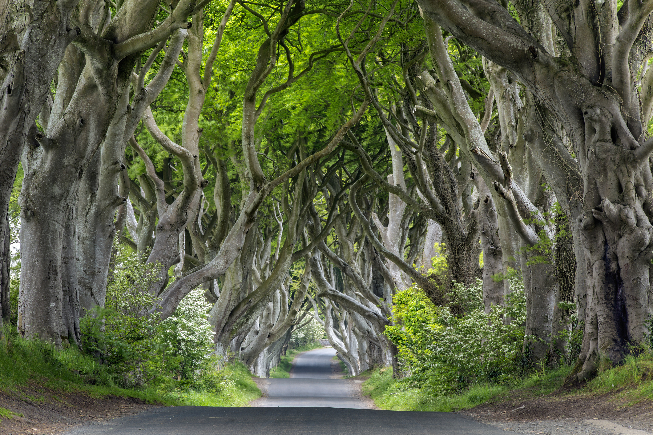 Must-have experiences for an invigorating Irish getaway