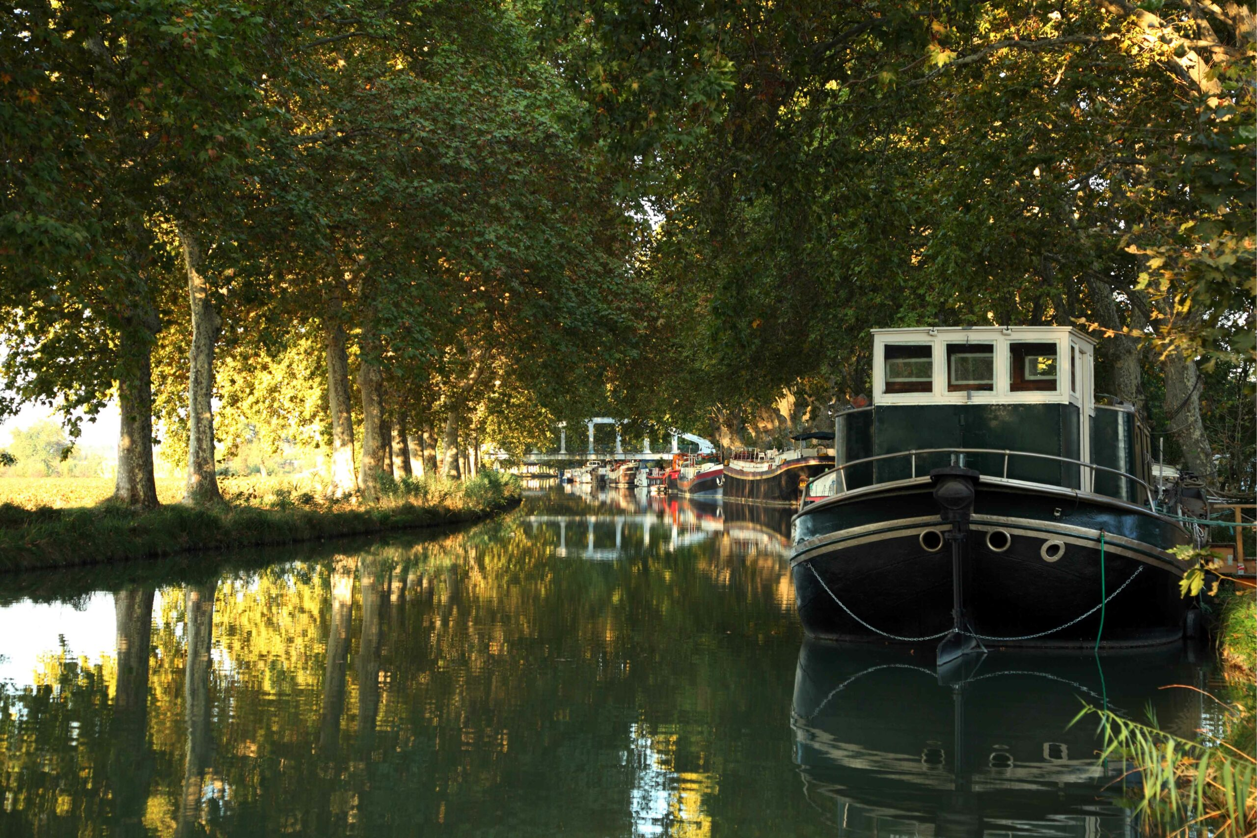 Canal_du_Midi_1-(1)