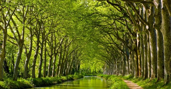 Boating the Canal du Midi