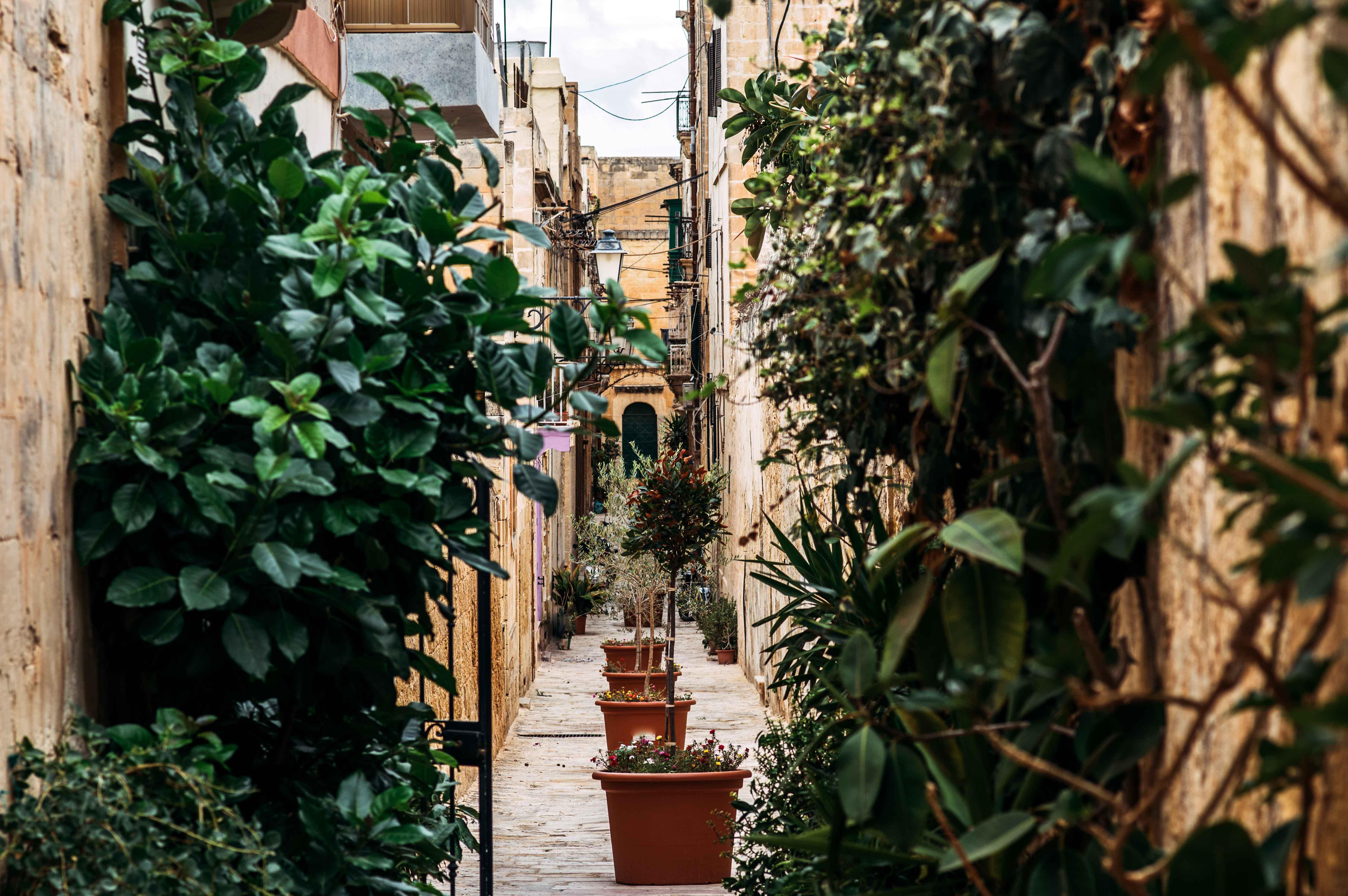 Canva---Street-view-in-Birgu,-Malta