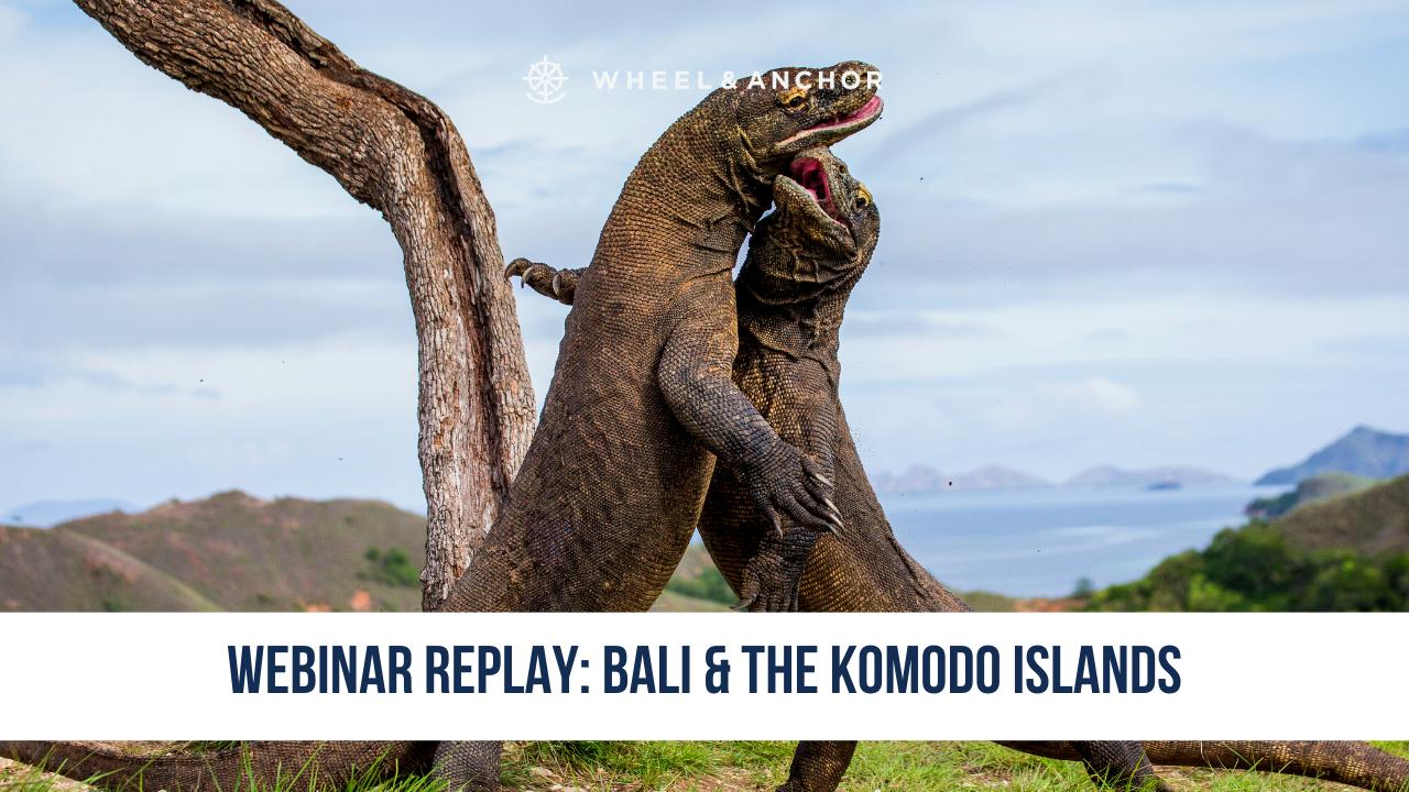 Webinar Replay: Chasing the Dragon: Bali & the Komodo Islands