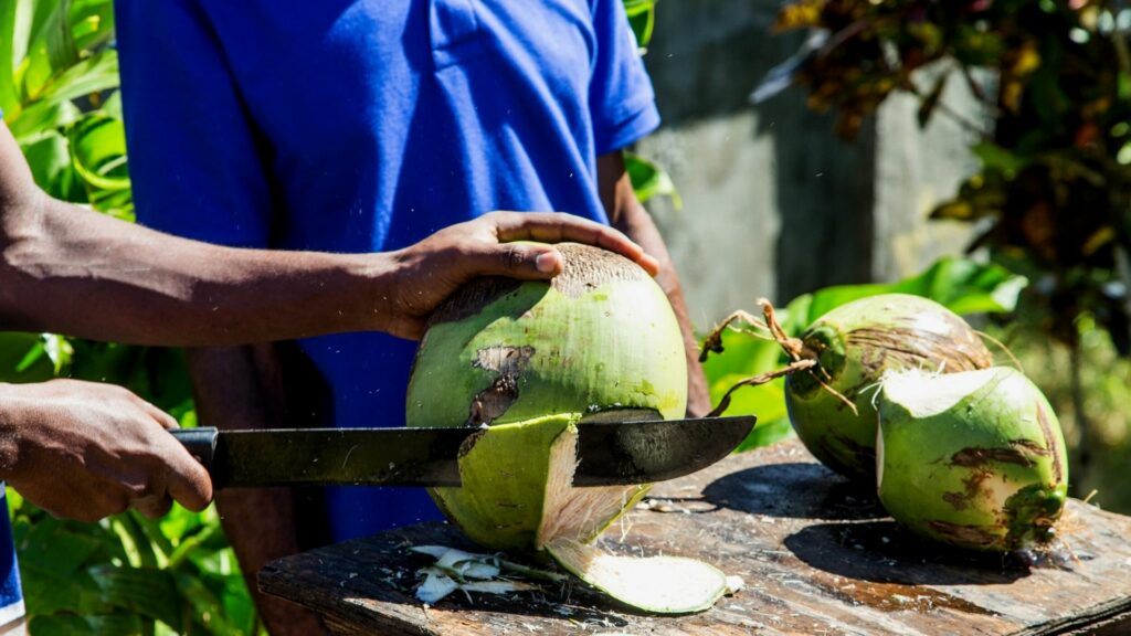 Opening a coconut with a machete