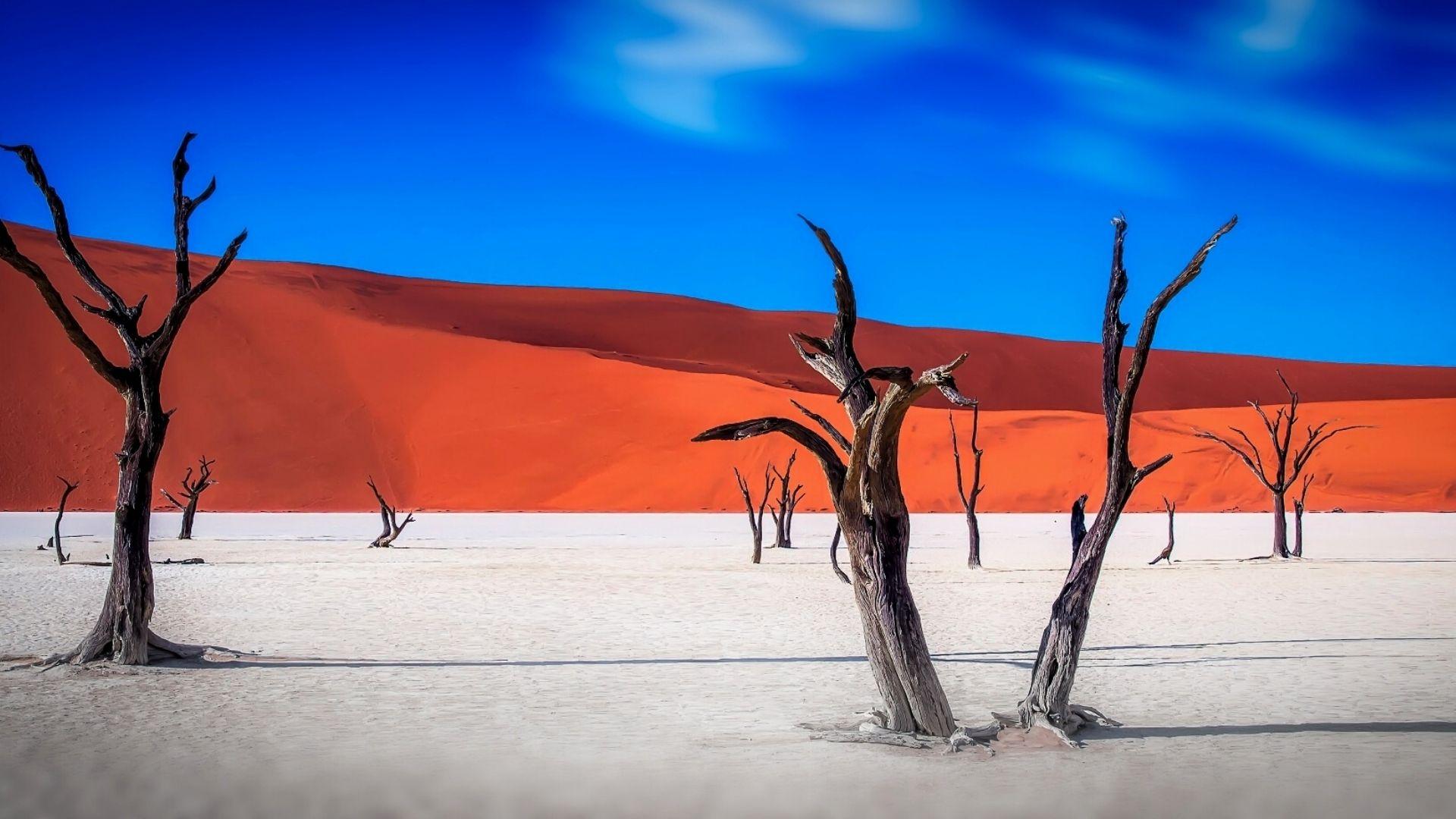 The Dunes & the Delta: Namibia & Botswana