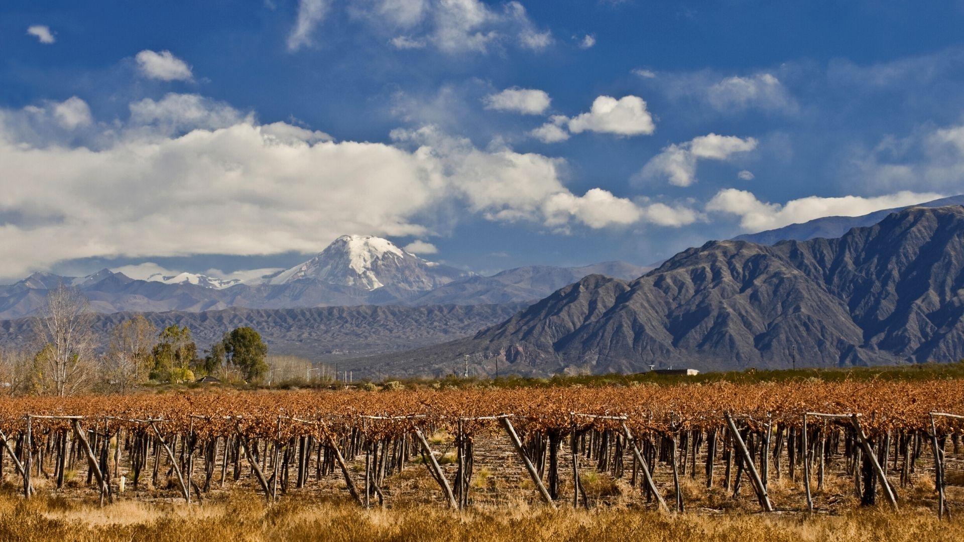Argentina & Chile: Crossing the Andes