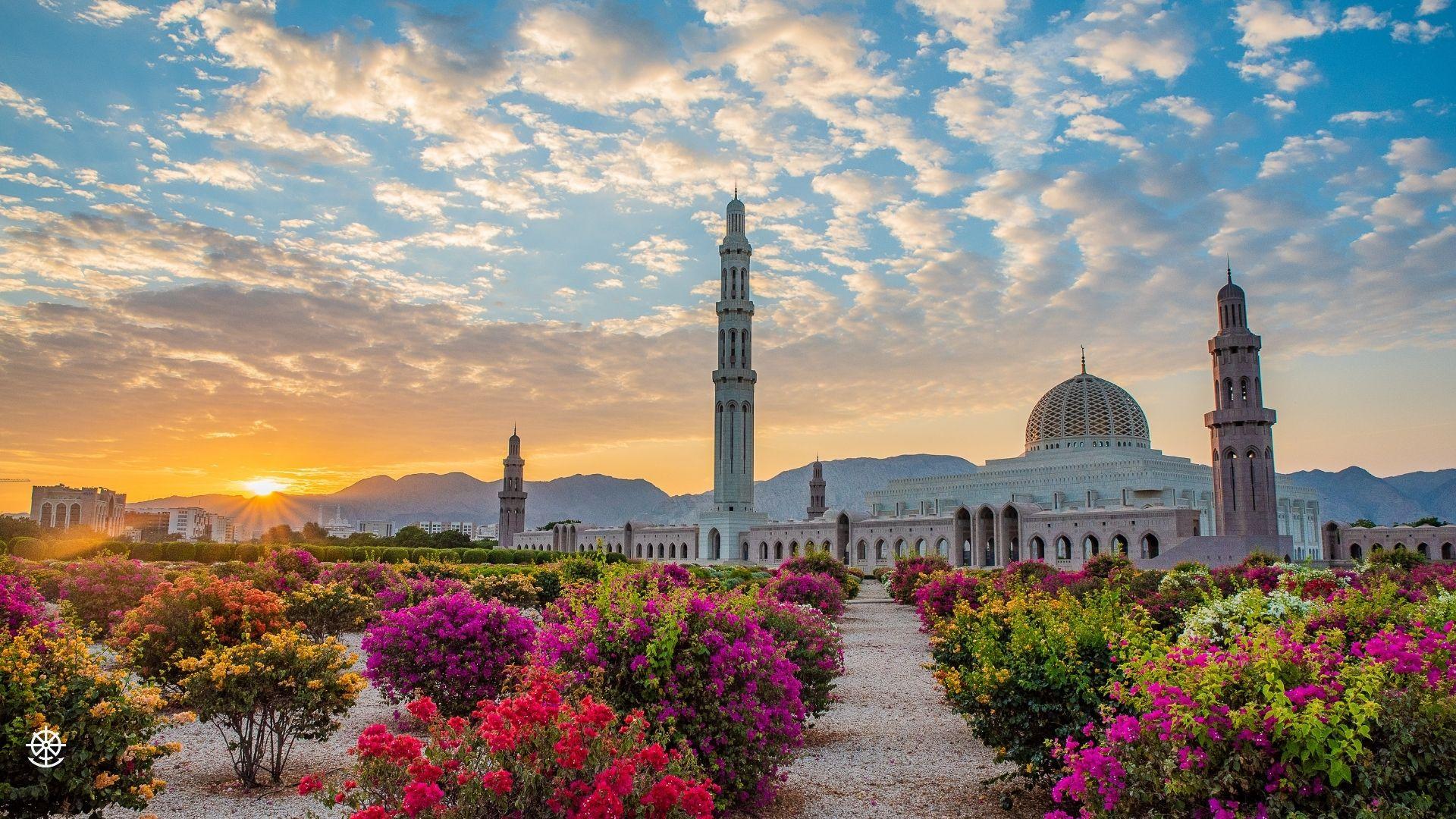 Wheel & Anchor Oman-10