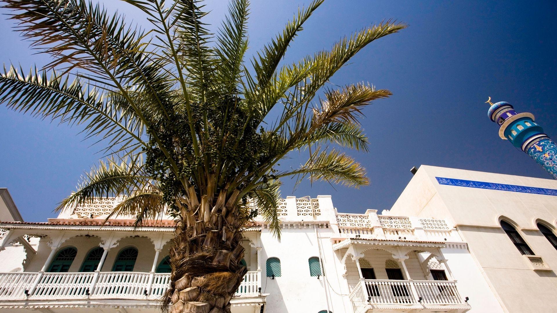 Wheel & Anchor Oman-13